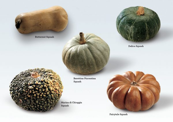 0950c6d63035 Holiday Entertaining Tips & Recipes: Winter Squash - Rizzoli New York